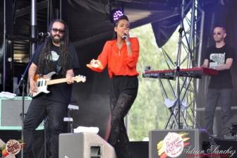 Photo Reggae Sun SKA 2014 Bordeaux RSS17 photographe adrien sanchez infante (9)
