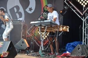 Photo Reggae Sun SKA 2014 Bordeaux RSS17 photographe adrien sanchez infante AFRICA N PERCU (5)