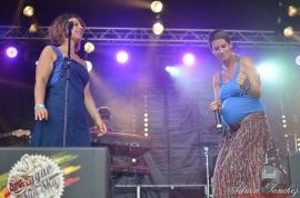 Photo Reggae Sun SKA 2014 Bordeaux RSS17 photographe adrien sanchez infante Alam (9)