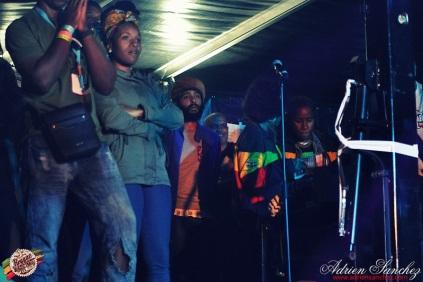 Photo Reggae Sun SKA 2014 Bordeaux RSS17 photographe adrien sanchez infante Chronixx (11)