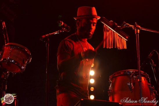 Photo Reggae Sun SKA 2014 Bordeaux RSS17 photographe adrien sanchez infante Chronixx Jesse Royal (1)