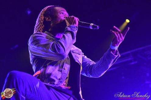 Photo Reggae Sun SKA 2014 Bordeaux RSS17 photographe adrien sanchez infante Chronixx Jesse Royal (25)