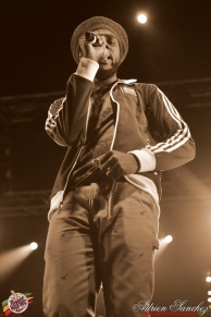 Photo Reggae Sun SKA 2014 Bordeaux RSS17 photographe adrien sanchez infante Chronixx Jesse Royal (44)
