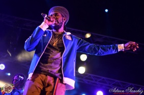 Photo Reggae Sun SKA 2014 Bordeaux RSS17 photographe adrien sanchez infante Chronixx Jesse Royal (7)