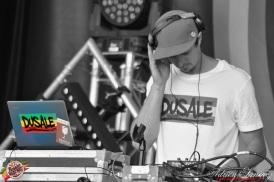 Photo Reggae Sun SKA 2014 Bordeaux RSS17 photographe adrien sanchez infante Dusale sound system (15)