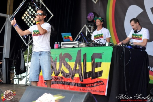 Photo Reggae Sun SKA 2014 Bordeaux RSS17 photographe adrien sanchez infante Dusale sound system (23)
