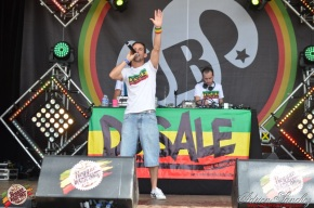 Photo Reggae Sun SKA 2014 Bordeaux RSS17 photographe adrien sanchez infante Dusale sound system (26)