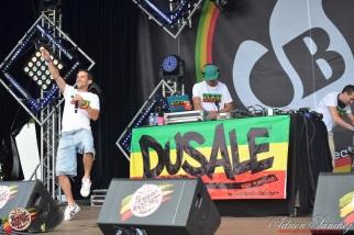 Photo Reggae Sun SKA 2014 Bordeaux RSS17 photographe adrien sanchez infante Dusale sound system (32)