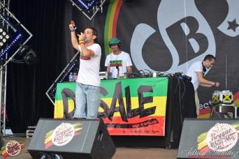 Photo Reggae Sun SKA 2014 Bordeaux RSS17 photographe adrien sanchez infante Dusale sound system (35)
