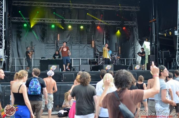 Photo Reggae Sun SKA 2014 Bordeaux RSS17 photographe adrien sanchez infante Ilbilly Hitec (1)