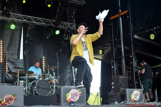 Photo Reggae Sun SKA 2014 Bordeaux RSS17 photographe adrien sanchez infante Ilbilly Hitec (2)