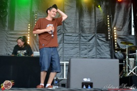 Photo Reggae Sun SKA 2014 Bordeaux RSS17 photographe adrien sanchez infante Ilbilly Hitec (3)