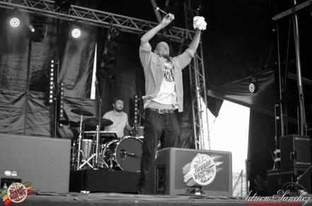 Photo Reggae Sun SKA 2014 Bordeaux RSS17 photographe adrien sanchez infante Ilbilly Hitec (4)