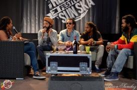 Photo Reggae Sun SKA 2014 Bordeaux RSS17 photographe adrien sanchez infante interview the indiggnation (3)