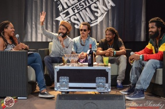 Photo Reggae Sun SKA 2014 Bordeaux RSS17 photographe adrien sanchez infante interview the indiggnation (5)