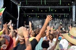 Photo Reggae Sun SKA 2014 Bordeaux RSS17 photographe adrien sanchez infante Protoje (2)