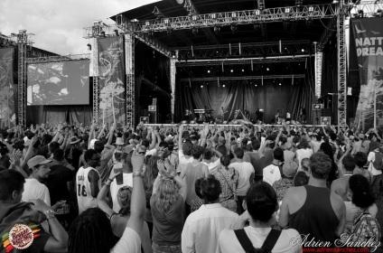 Photo Reggae Sun SKA 2014 Bordeaux RSS17 photographe adrien sanchez infante Protoje Paris Lamontagne Indiggnation (7)