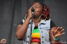 Photo Reggae Sun SKA 2014 Bordeaux RSS17 photographe adrien sanchez infante Protoje The Indiggnation (26)