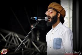 Photo Reggae Sun SKA 2014 Bordeaux RSS17 photographe adrien sanchez infante Protoje The Indiggnation (36)