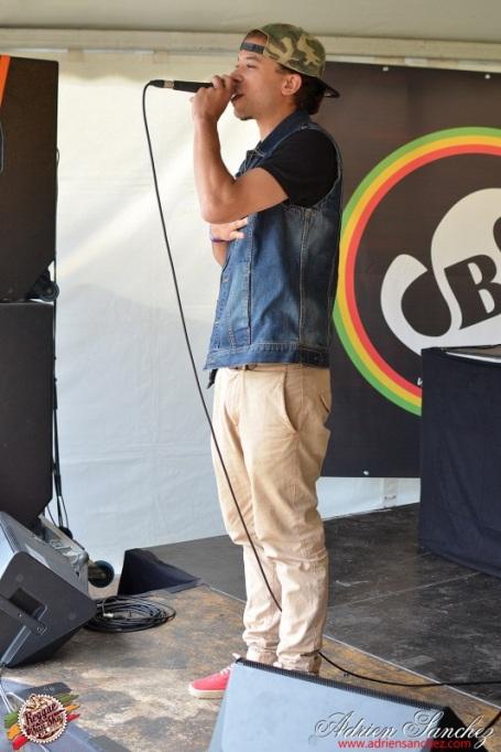 Photo Reggae Sun SKA 2014 Bordeaux RSS17 photographe adrien sanchez infante showcase mardjenal (2)
