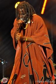 Photo Reggae Sun SKA 2014 Bordeaux RSS17 photographe adrien sanchez infante Tiken Jah Fakoly (1)