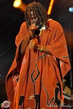 Photo Reggae Sun SKA 2014 Bordeaux RSS17 photographe adrien sanchez infante Tiken Jah Fakoly (2)