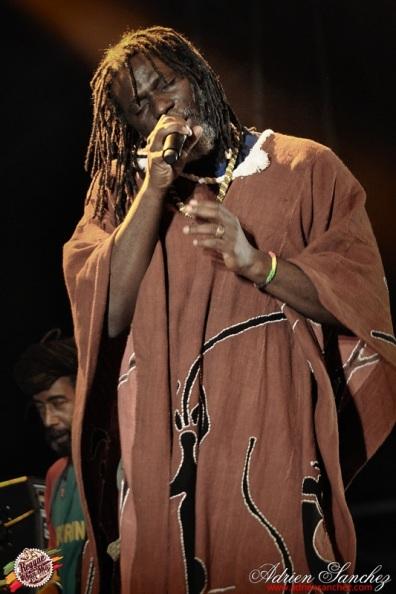 Photo Reggae Sun SKA 2014 Bordeaux RSS17 photographe adrien sanchez infante Tiken Jah Fakoly (3)