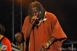 Photo Reggae Sun SKA 2014 Bordeaux RSS17 photographe adrien sanchez infante Tiken Jah Fakoly (4)