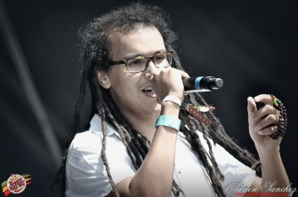 Photo Reggae Sun SKA 2014 Bordeaux RSS17 photographe adrien sanchez infante wailing trees (14)