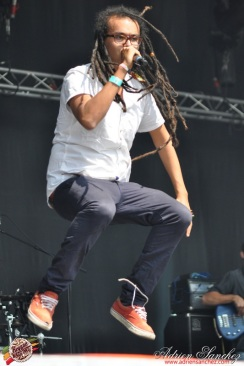 Photo Reggae Sun SKA 2014 Bordeaux RSS17 photographe adrien sanchez infante wailing trees (3)
