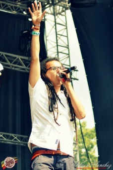 Photo Reggae Sun SKA 2014 Bordeaux RSS17 photographe adrien sanchez infante wailing trees (5)