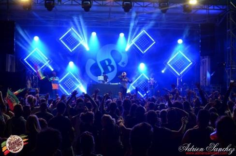 Photo RSS17 Reggae Sun Ska Vendredi 1 Août 2014 Bordeaux Photographe Adrien Sanchez Infante (139)