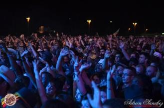 Photo RSS17 Reggae Sun Ska Vendredi 1 Août 2014 Bordeaux Photographe Adrien Sanchez Infante (180)