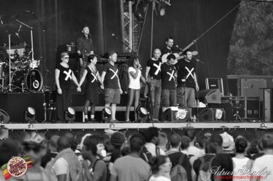 Photo RSS17 Reggae Sun Ska Vendredi 1 Août 2014 Bordeaux Photographe Adrien Sanchez Infante (63)