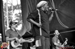 Photo RSS17 Reggae Sun Ska Vendredi 1 Août 2014 Bordeaux Photographe Adrien Sanchez Infante Daniel Bambaata Marley (3)