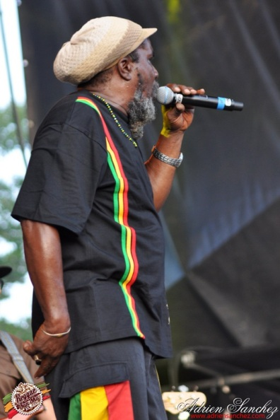 Photo RSS17 Reggae Sun Ska Vendredi 1 Août 2014 Bordeaux Photographe Adrien Sanchez Infante Daniel Bambaata Marley (4)