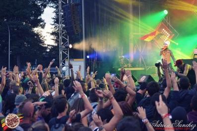 Photo RSS17 Reggae Sun Ska Vendredi 1 Août 2014 Bordeaux Photographe Adrien Sanchez Infante Ilements (1)