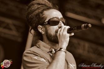 Photo RSS17 Reggae Sun Ska Vendredi 1 Août 2014 Bordeaux Photographe Adrien Sanchez Infante Jim Rezident Sound (2)