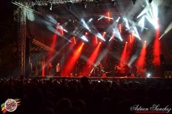 Photo RSS17 Reggae Sun Ska Vendredi 1 Août 2014 Bordeaux Photographe Adrien Sanchez Infante Madness on stage (2)