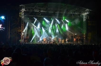 Photo RSS17 Reggae Sun Ska Vendredi 1 Août 2014 Bordeaux Photographe Adrien Sanchez Infante Madness on stage (3)