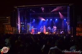 Photo RSS17 Reggae Sun Ska Vendredi 1 Août 2014 Bordeaux Photographe Adrien Sanchez Infante Madness on stage (4)