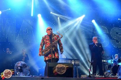 Photo RSS17 Reggae Sun Ska Vendredi 1 Août 2014 Bordeaux Photographe Adrien Sanchez Infante Madness on stage (5)