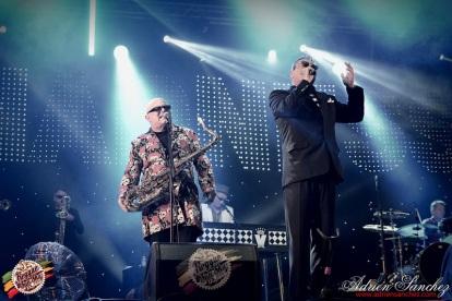 Photo RSS17 Reggae Sun Ska Vendredi 1 Août 2014 Bordeaux Photographe Adrien Sanchez Infante Madness on stage (6)