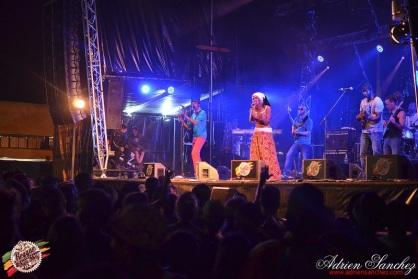 Photo RSS17 Reggae Sun Ska Vendredi 1 Août 2014 Bordeaux Photographe Adrien Sanchez Infante Mo'Kalamity on stage