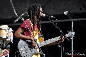 Photo RSS17 Reggae Sun Ska Vendredi 1 Août 2014 Bordeaux Photographe Adrien Sanchez Infante Raging Fyah (14)