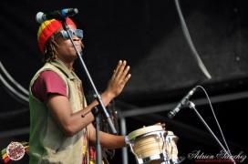 Photo RSS17 Reggae Sun Ska Vendredi 1 Août 2014 Bordeaux Photographe Adrien Sanchez Infante Raging Fyah (2)