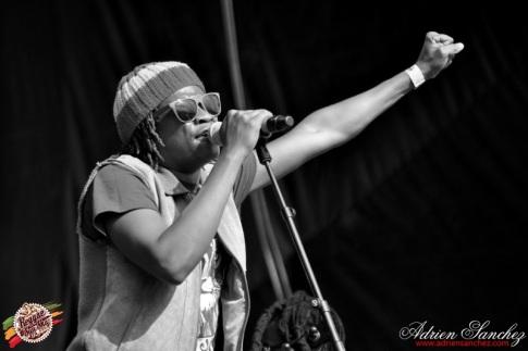 Photo RSS17 Reggae Sun Ska Vendredi 1 Août 2014 Bordeaux Photographe Adrien Sanchez Infante Raging Fyah (26)