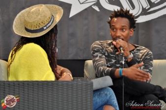 Photo RSS17 Reggae Sun Ska Vendredi 1 Août 2014 Bordeaux Photographe Adrien Sanchez Infante Rootwords interview