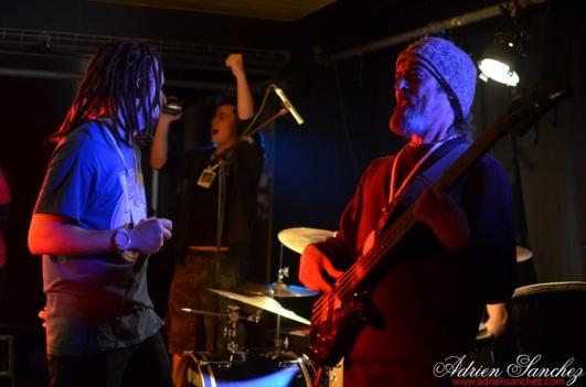 Photo concert contre le racisme bordeaux pessac 2015 unef jafly peace defendaz lnp roots family eurosia sound system photographe adrien sanchez infante (42)