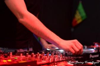 Photo Festi'ju Bagus Bar la teste de buch Mars 2015 Olizamba Eurosia Sound Jeebay DJ MX Ma Ti Bo reggae progressive house trance music photographe maria jimenez cardaillaguet adriensanchez (8)